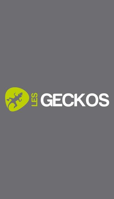 geckos-1
